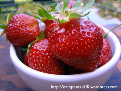 strawberries truskawki